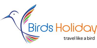Birds Holiday Logo