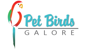 Pet Birds Logo