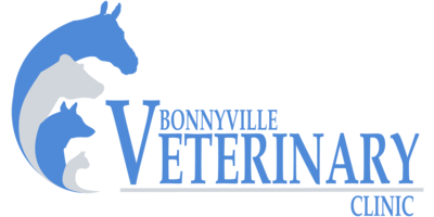 Bonnyville Veterinary Logo