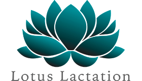 Lotus Lactation Logo